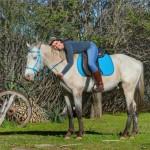 ambi-under-saddle